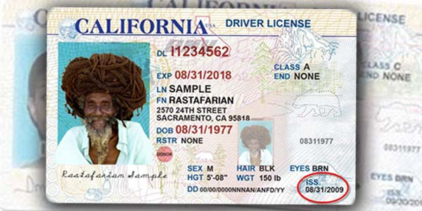 Immigrants Driver's A Economic Caribpress Lifeline Getting » For Is License