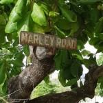 Marley Road