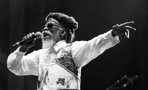 Bunny Wailer in concert at Reggae Geel, Belgium. August 1, 2014. (PHOTO: Peter Verwimp/Creative Commons)